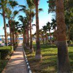 Anmaria Beach Hotel Aja Napa Kipar