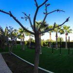 Park kamila Mazotos Larnaka